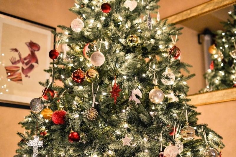 Medidas de acci�n para evitar incendios dom�sticos en Navidad